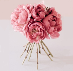 wholesale-peony-flowers